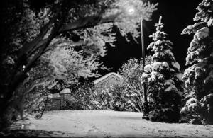 1924 . Talvinen Kaivopuisto iltavalaistuksessa.