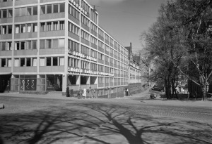 snelm 13 grunberg 1958